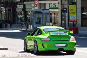 Lime Green by Attila-Le-Ain