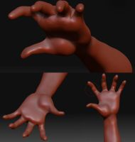Zbrush Exercise by Hankins