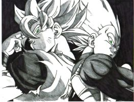goku and vegeta by trunks24