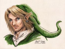 Adult Link... by Artsy50