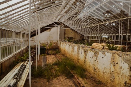 Abandoned Greenhouse by lindowyn-stock