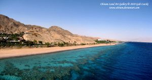 The Coral Reef of Eilat by Olvium