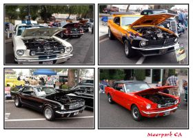 Moorpark Car Show 3 by sandwedge