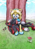 Commish2: MariaTheHedgehoge by Maria-Robotnik