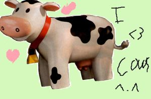 Cows by Tonks-Lupin