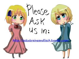 ask us and follows by seillua