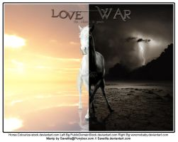 Love + War by Savellla
