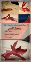 fall leaves pack by priesteres-stock