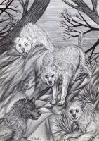 Exoterism - Wolf pack by FuriarossaAndMimma