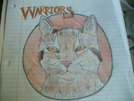 warrior cat by Silver-Wolf-19