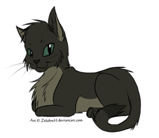 Cat Adoptable - Closed by K-i-l-i-a