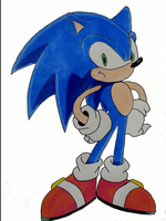Sonic is Unimpressed Evolution by DarkGamer2011