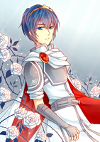 FE: A Sparkly White Marth by camikawaii