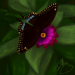 Speed Painting 04 by Anyahs