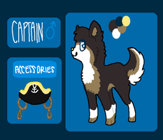 captain ref by sailordoq