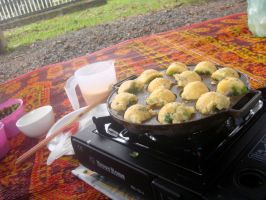 Takoyaki picnic by plainordinary1
