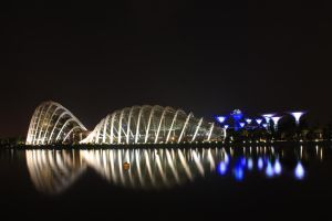 Singapore Gardens by the Bay by cscmatrix