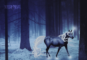 AT: The night is dark... by winter-bright