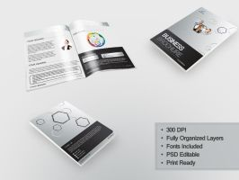 Business Brochure by Cech1330