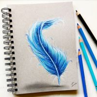 colored pencil feather illustration by Tinesdierportretten
