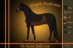 Simple Perfection's reference sheet by Nihaleren