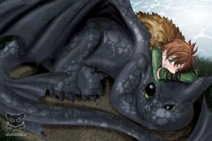 HTTYD - Fanart by mind-crash