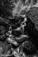 The Painting Of Water BW by mjohanson