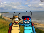 Bob and Flyer in Scarborough by BluebottleFlyer