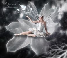 Angel sitting on the Beauty white Flower by annemaria48