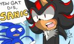 YEW GAT DIS SANIC!!! by Momocatluv