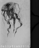 Jellyfish2010 by StrwBrry