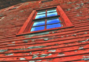 Old Reds Window by toddcarter