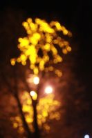 christmas lights bokeh_3 by julismith