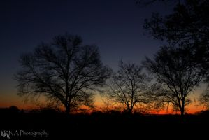 Valley Forge Sunrise 11-15, 2 by Whurrledpeas