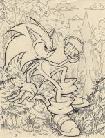 Sonic Will Prevail! (2008) by La-Nora