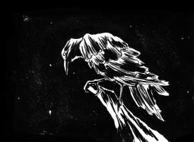 crow by gzapata