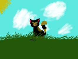 kitten in the grass by Animallover08