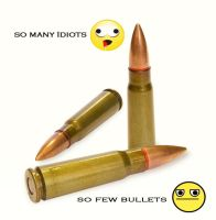 So many idiots so few bullets by 1sk