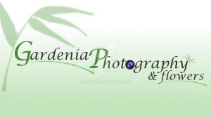 Gardenia (Facebook cover photo) by dtrford