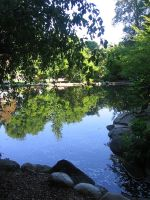 Lithia Park by PuckRox