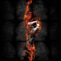 Liberation In Flames_cd cover by suicide777bomber