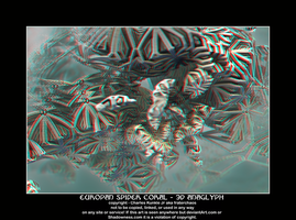 europan spder coral - sD anaglyph by fraterchaos