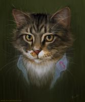 Portrait of my Cat, Magneto by randis