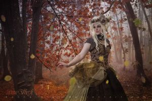 4 Seasons - Autumn by annewipf