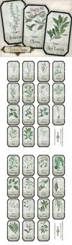 Printable Shabby Herbal Labels by VectoriaDesigns