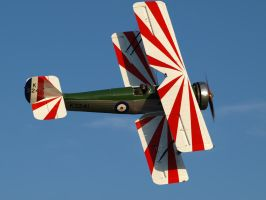 Old Warden Display by davepphotographer