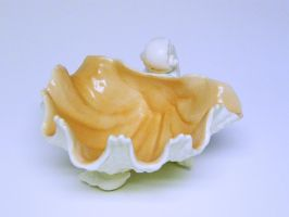 Shell Dish Stock6 by D-is-for-Duck