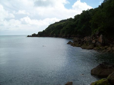View from a beach in Torquay by hedgehog-heaven
