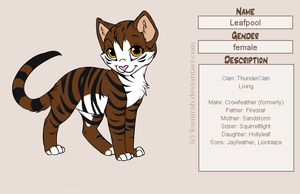 Warriors: Leafpool by MarauderWolf93