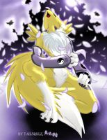 Digimon Tribute- Renamon by tailsrulz